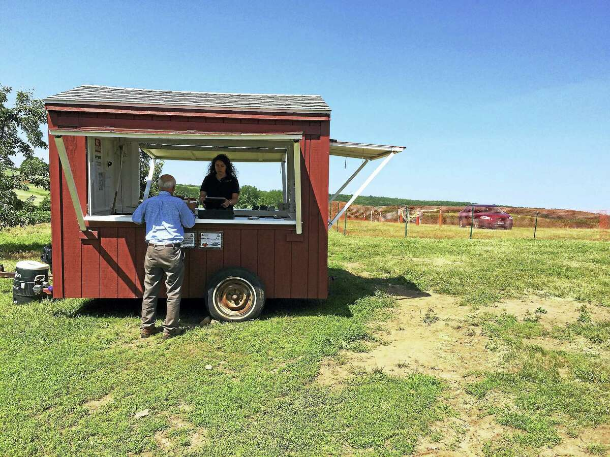 Strawberry season is in full bloom at Lyman Orchards.