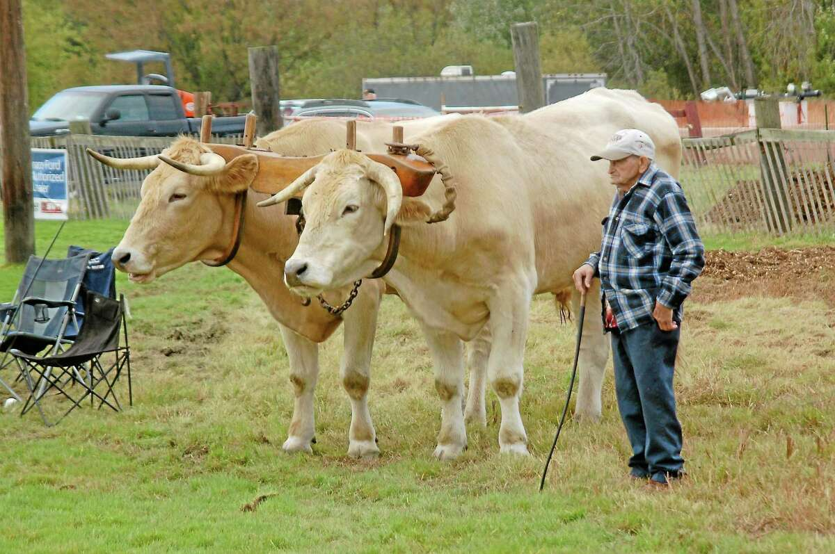 All shapes, sizes and varieties of animals will either be on display or working at this weekend's fair.