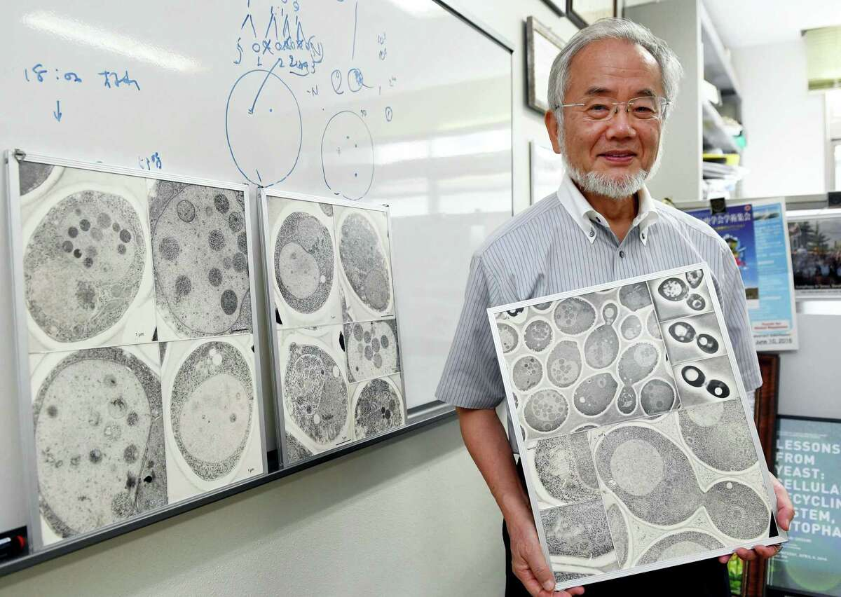 In this July, 2016 photo, Japanese scientist Yoshinori Ohsumi smiles at the Tokyo Institute of Technology campus in Yokohama, south of Tokyo. Ohsumi was awarded this year's Nobel Prize in medicine on Monday, Oct. 3, for discoveries related to the degrading and recycling of cellular components.
