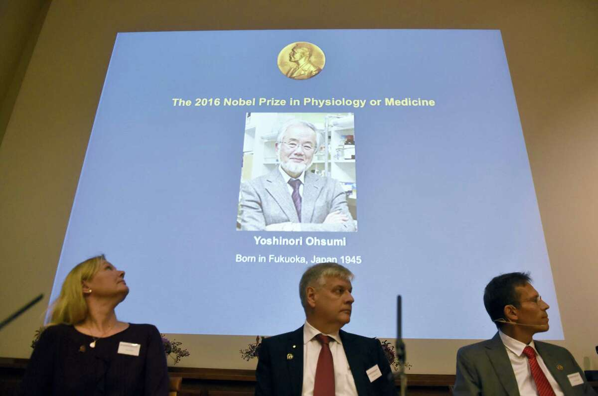 A photo of Nobel Prize winner Yoshinori Ohsumi of Japan, is displayed on a screen at the Nobel Forum in Stockholm, Sweden, during the announcement of the Nobel Prize for Medicine on Oct. 3, 2016.