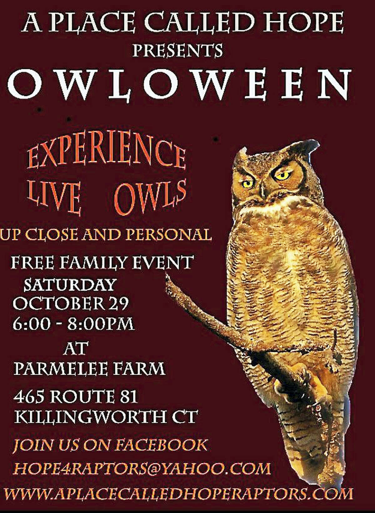 A Place Called Hope is hosting it's tenth annual Owl-O-Ween event on Saturday, October 29th from 6-8pm. This is free familly event and takes place outdoors at Parmelee Farm. 465 Route 81 Killingorth CT. Have a close up encounter with Native Owls! Wear your costumes