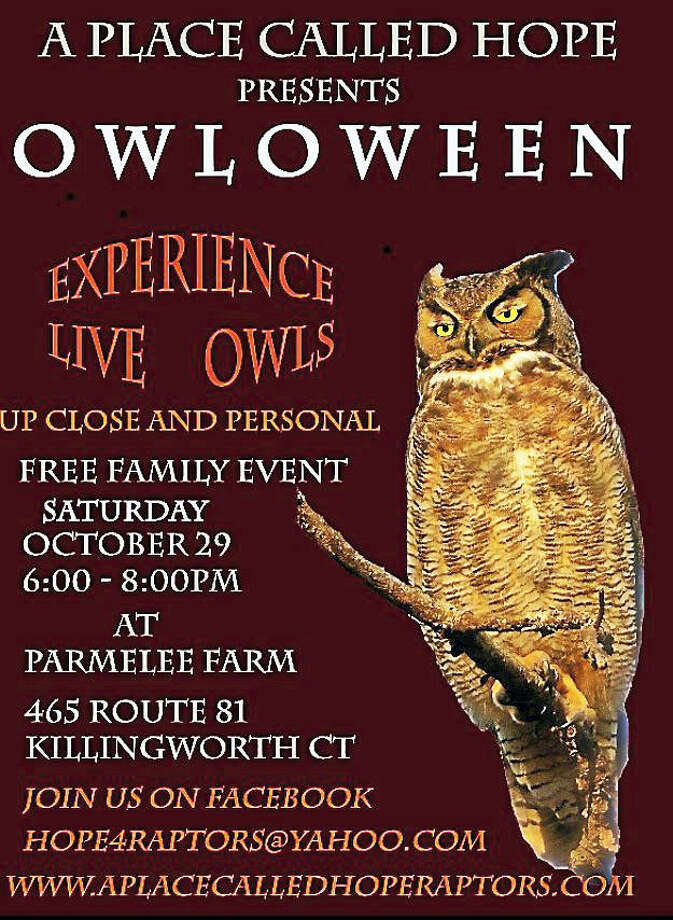 A Place Called Hope is hosting it's tenth annual Owl-O-Ween event on Saturday, October 29th from 6-8pm. This is free familly event and takes place outdoors at Parmelee Farm. 465 Route 81 Killingorth CT. Have a close up encounter with Native Owls! Wear your costumes Photo: Digital First Media