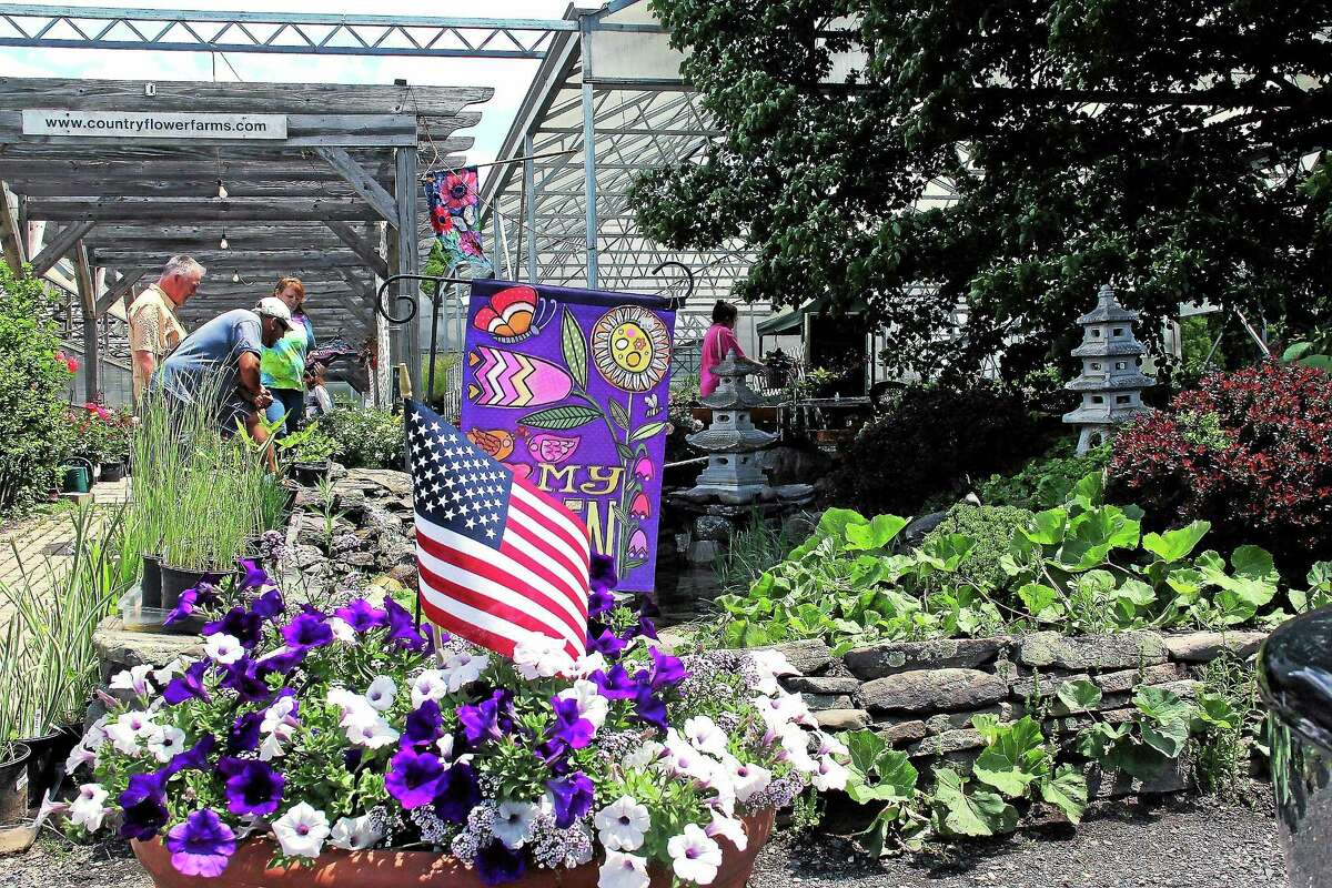 Country Flower Farms on Baileyville Road in Middlefield has been around for 250 years, before the birth of United States. The land was originally deeded by the King of England himself, the owner says.