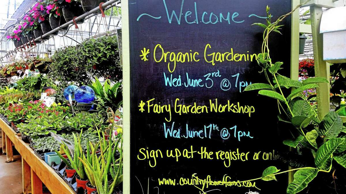 Country Flower Farms will hold a fairy garden workshop June 17 in Middlefield.
