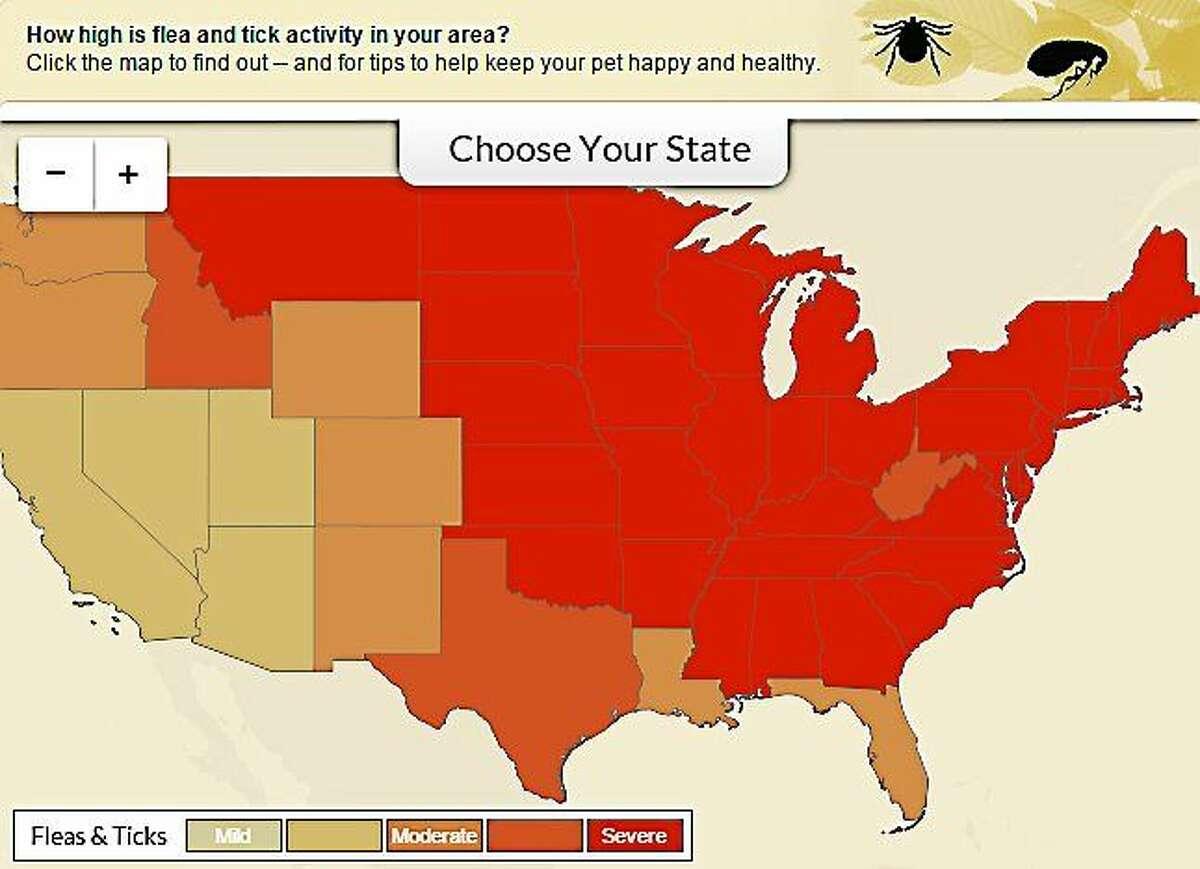 Screenshot of WebMD Flea and Tick Map