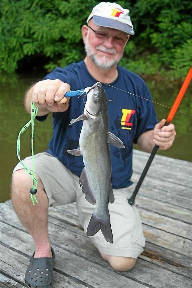 File photo Catfish are some of the most sought-after fish in Connecticut.