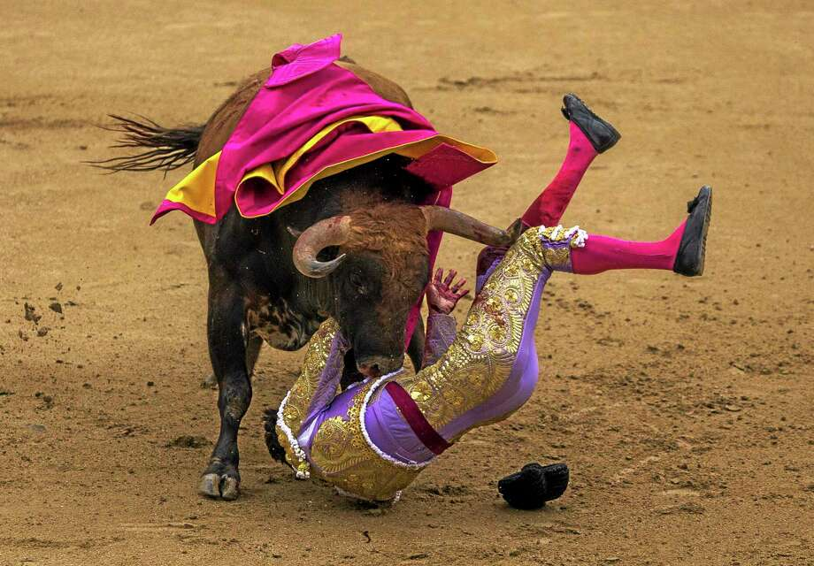 Spanish bullfighter Antonio Nazare  is tossed by a Los Chospes ranch fighting bull during a bullfight at Las Ventas bullring in Madrid, Spain, Tuesday, May 20, 2014. Bullfighting is a tradition  in Spain and the season runs from March to October. (AP Photo/Andres Kudacki) Photo: AP / AP