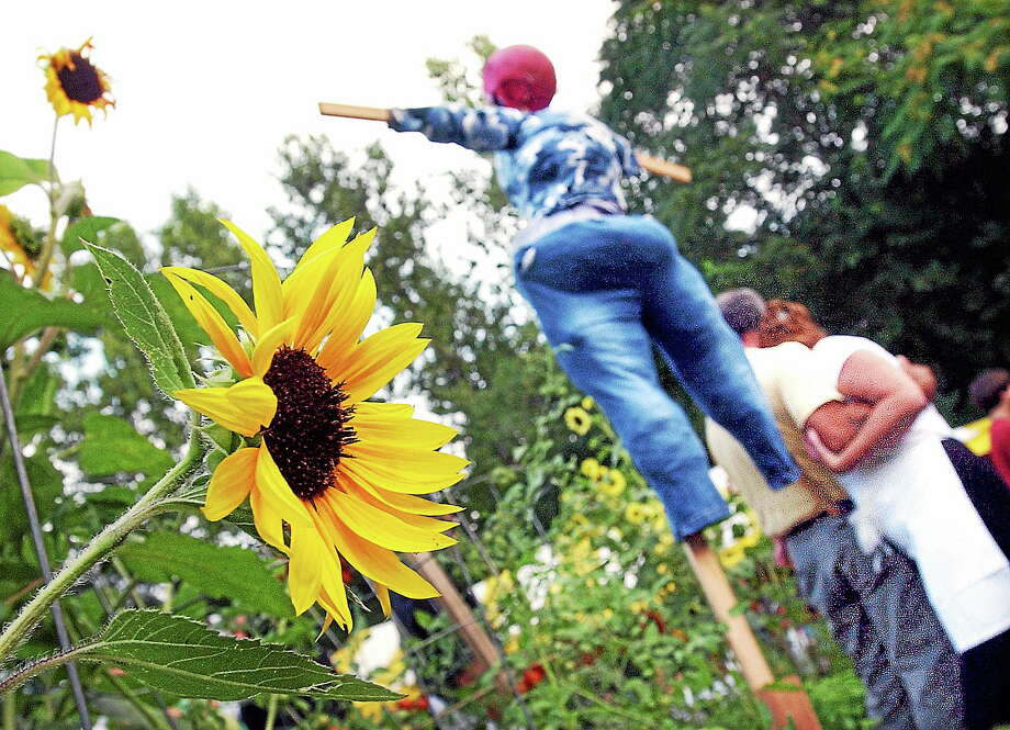 Gene LaPointe and Crystal Hintz (bottom right) hug under a scarecrow at last year's North End Action Team garden party at the Erin Street Community Garden. Photo: File