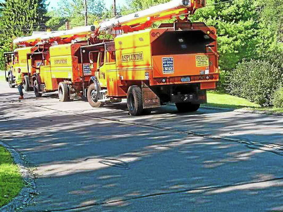 Tree trimming companies stayed busy after Hurricane Irene in 2012. Photo: (New Haven Register File Photo)