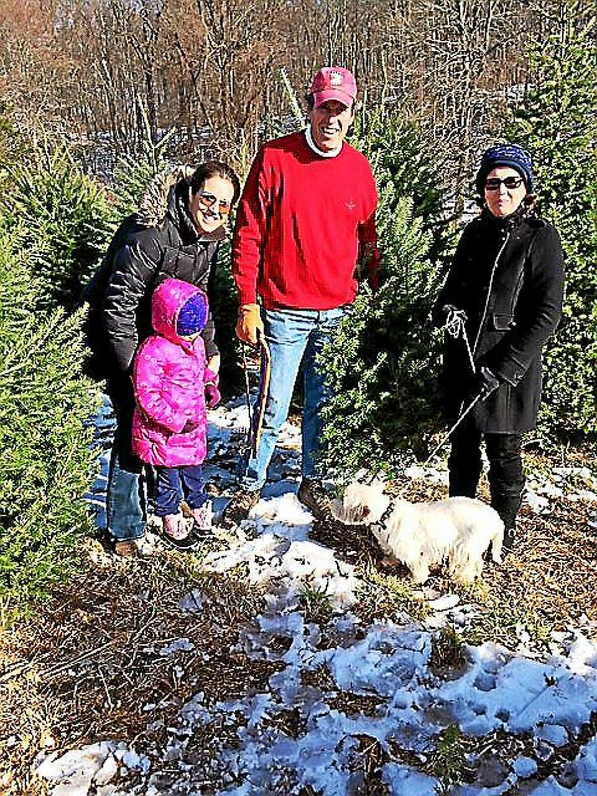 Heather Chandor shops for a Christmas tree with her parents and daughter, Jules, 4, recently.