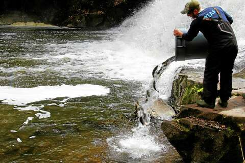 DEEP completes spring trout stocking across Connecticut