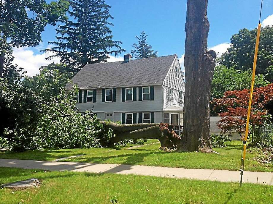 On Wednesday morning, a giant tree on the corner of Cottage Street and South Main Street in Middletown that fell dangerously close to a home, prompted a little rubbernecking. Photo: Cassandra Day — The Middletown Press
