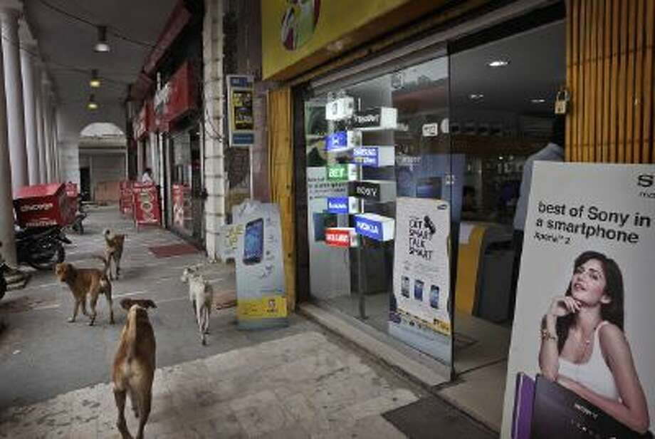 Stray dogs walks outside a mobile phone shop in New Delhi, India.