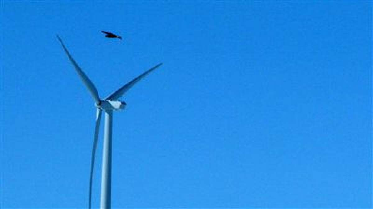A golden eagle flies over a wind turbine at a wind farm in Converse County Wyo. The Obama administration will allow companies to seek authorization to kill and harm bald and golden eagles for up to 30 years without penalty in an effort to balance some of the environmental trade-offs of green energy.