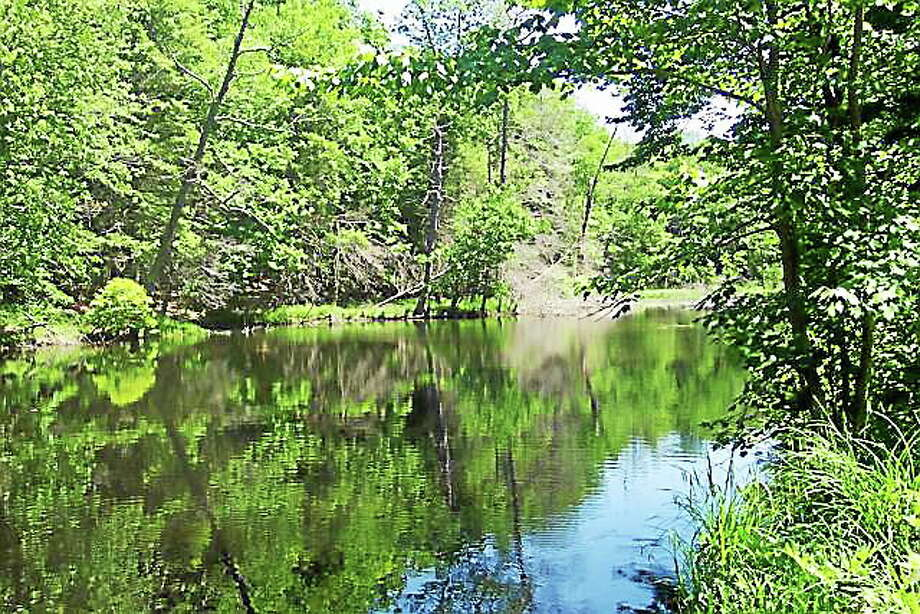 Courtesy photo The Connecticut River Watershed Council and Appalachian Mountain Club and the Vermont River Conservancy will host a river celebration at Gillette Castle State Park in East Haddam. Photo: Journal Register Co.
