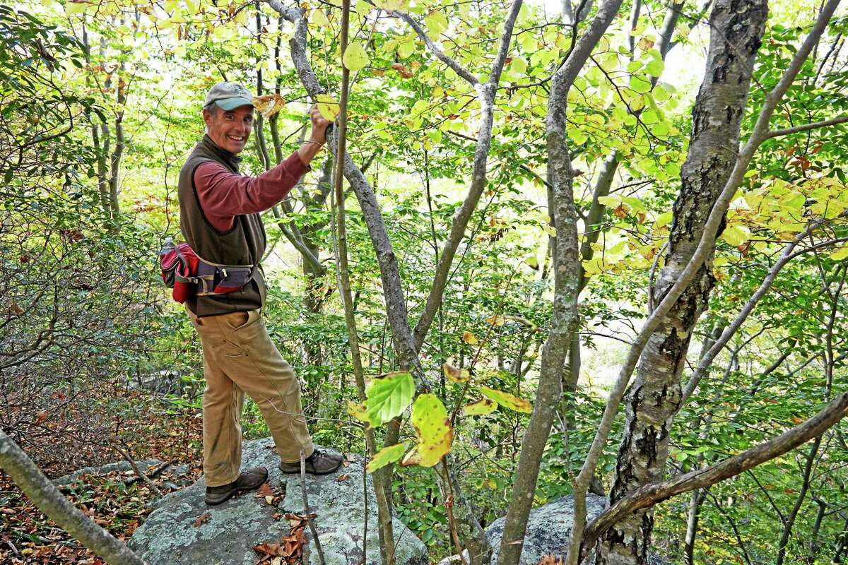 $10 million is needed to purchase the 1,000-acre Preserve in Old Saybrook.