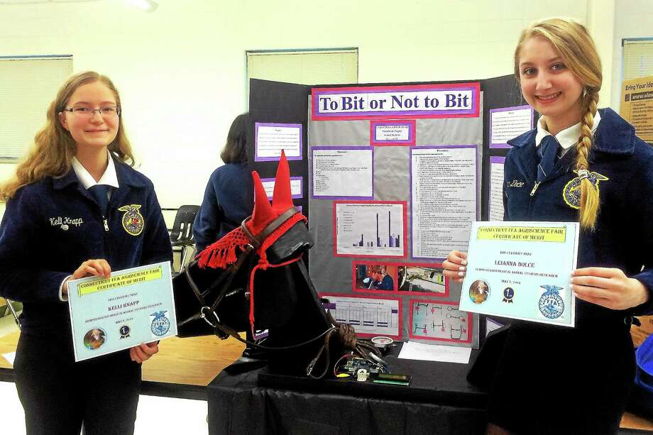 Midnight the horse model is part of an award-winning project that helped to secure convention spots for Mattabeset FFA students Leianna Dolce and Kelli Knapp. Photo: Courtesy Amanda Thomson