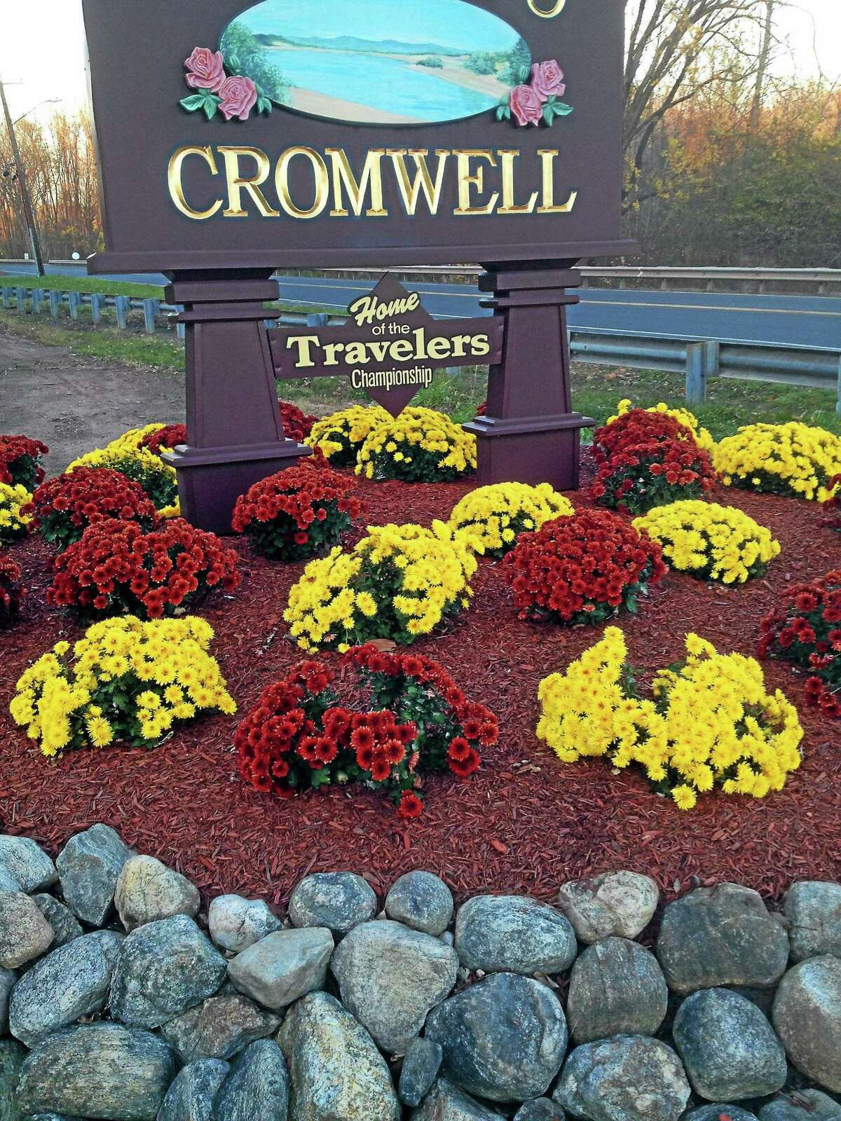 In this November photo, remnants of the original exotic plants replaced by mums at Cromwell's two welcome signs were visible behind town hall.