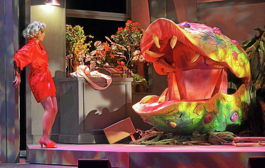 Photo by Roger U. WilliamsLaura Woyasz as Audrey faces Audrey II in Little Shop of Horrors. Photo: Journal Register Co. / 29 Blake Street,  Ivoryton CT 06442