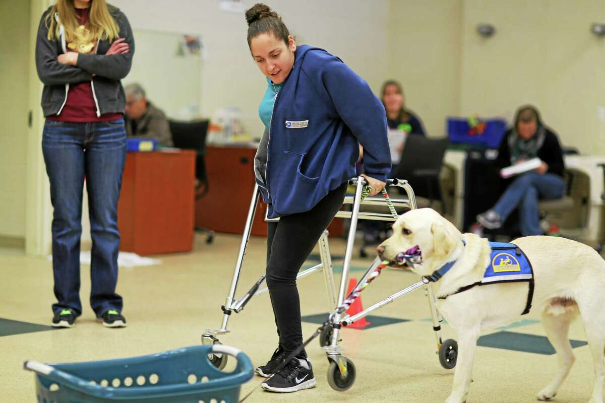 Molly Carta of Middletown, a vocational counselor for the disabled, was recently matched with assistance dog Dasher from Canine Companions for Independence.