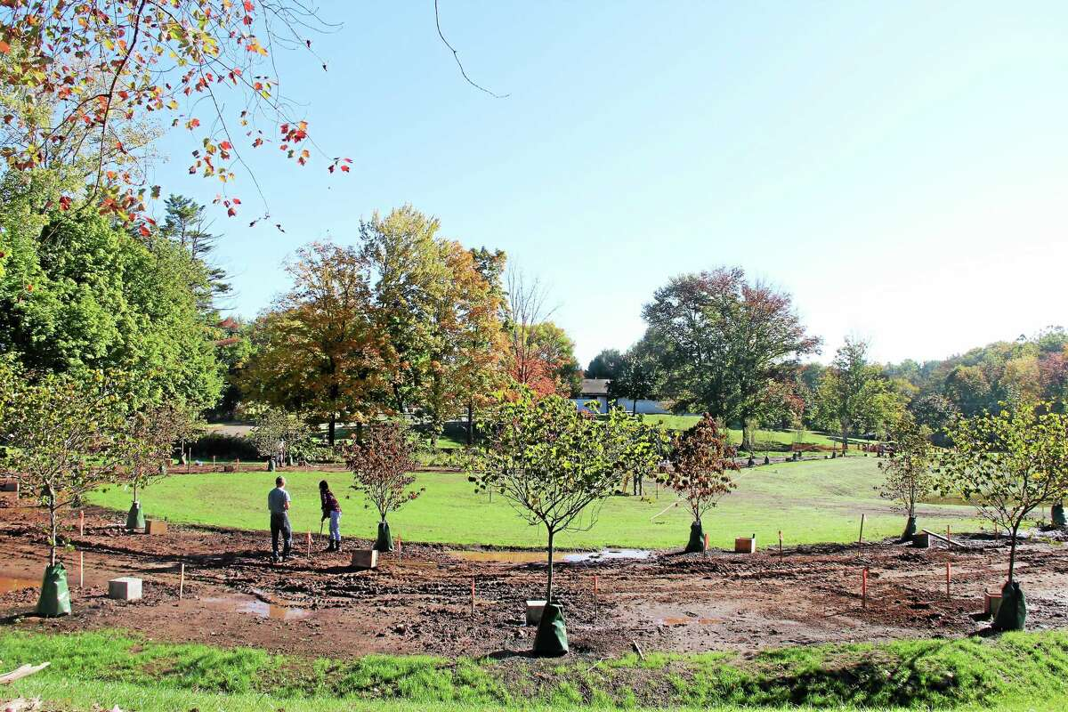 As the Connecticut Trees of Honor Memorial project nears completion of phase one construction, additional volunteers are needed to help rake and spread mulch around the 65 trees planted at Veterans Memorial Park.