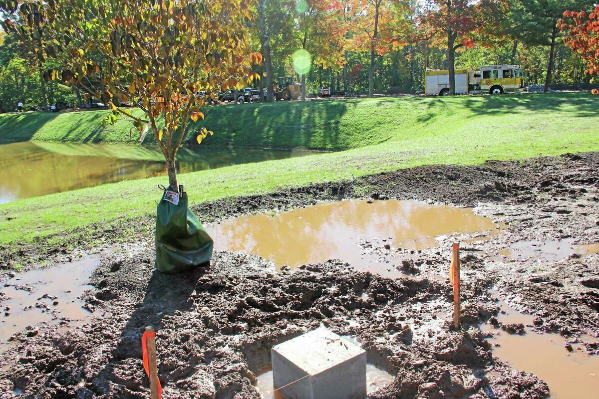 As the Connecticut Trees of Honor Memorial project nears completion of phase one construction, additional volunteers are needed to help rake and spread mulch around the 65 trees planted at Veterans Memorial Park, on Walnut Grove Road, in Middletown.