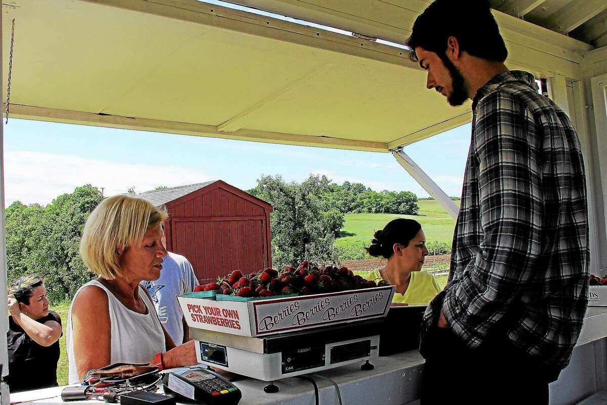 Lyman Orchards is located at 32 Reeds Gap Road, Middlefield. Info: call 860-349-6015 or visit lymanorchards.com