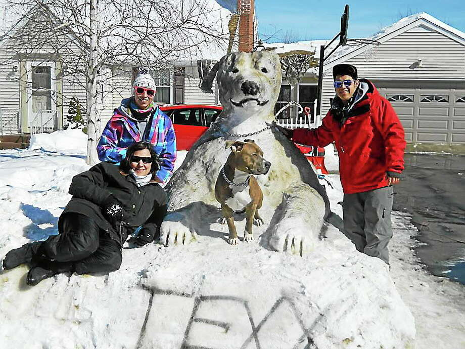The Malave family on Fowler Avenue in Middletown created their second ever snow animal over the weekend, a replica of the family's pit bull, Texx. Photo: Submitted Photo