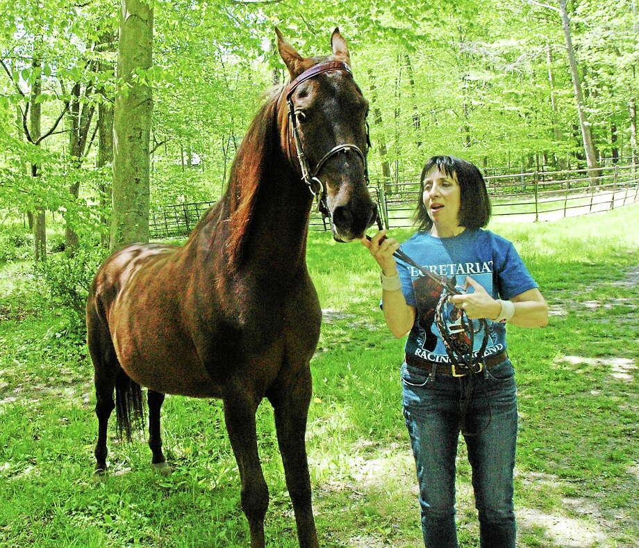 Submitted photo - Marilyn Davis Marilyn Davis, a lifelong horse owner who has written the childrenís book, ìMaddie and Beanie,î will read from her book on Saturday, June 7, at 11 a.m. at the Chester Public Library. She is shown here with her horse, Lacey. Photo: Journal Register Co.