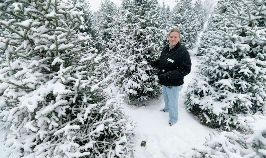 Jenny Howell stands among snow-covered Christmas trees on her family-run Howell Tree Farm in Cumming, Iowa. Photo: Charlie Neibergall — The Associated Press  / AP