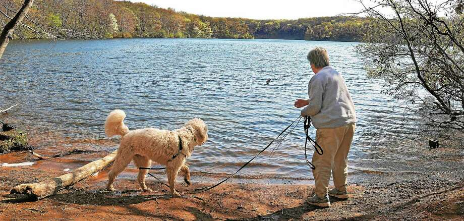 Millers Pond in Durham is seen in this April 2012 file photo. Photo: Middletown Press File Photo  / TheMiddletownPress