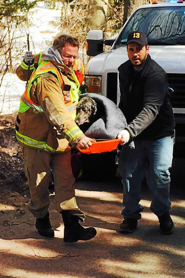 Contributed photo Haddam firefighters Jeff Harke and Mike Mancuso in the front and firefighter Tony Lafo, behind them, assisted with the rescue of a dog who had fallen into a nearby river. Photo: Journal Register Co.