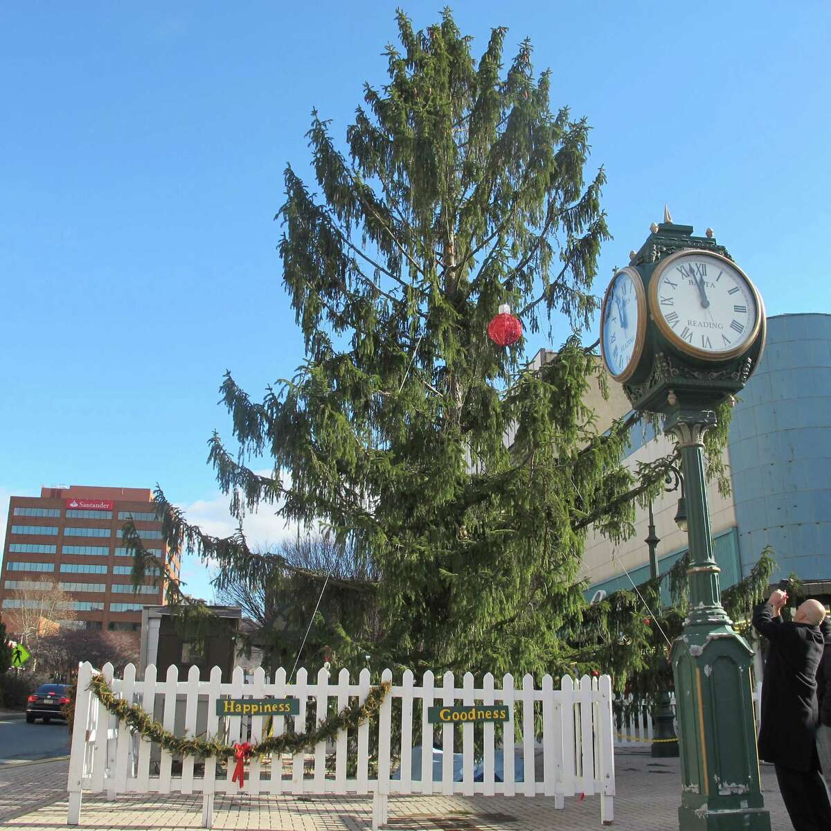 """FILE - In this Dec. 12, 2014 file photo City Councilman Jeff Waltman photographs the city's official Christmas tree in Reading, Pa. A year after its scraggly """"Charlie Brown"""" Christmas tree caused an uproar, the city is putting up a more traditional tannenbaum this holiday season. The official Christmas tree in Reading will be a pleasingly plump, 25-foot-tall white fir, cut down on Monday, Nov. 9, 2015."""