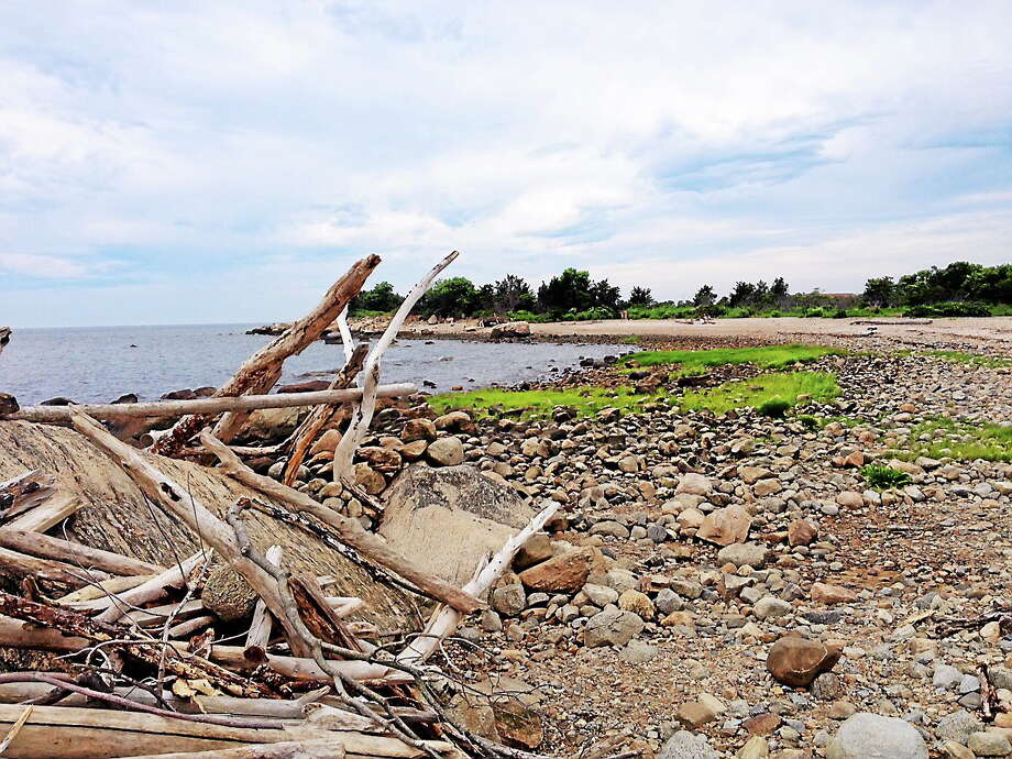 The National Oceanic and Atmospheric Administrationís Marine Debris Program has awarded the state of Connecticut more than $752,000 to clean up areas damaged by Storm Sandy in 2012, including Hammonassett State Park in Madison. Photo: Cassandra Day - The Middletown Press
