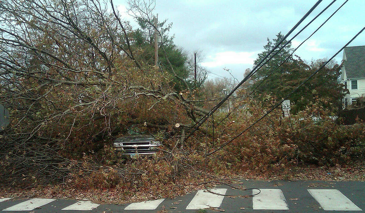 In this Oct. 30, 2012 photo, a truck sits covered with tree debris in Fairfield, Conn. after Superstorm Sandy made landfall overnight.