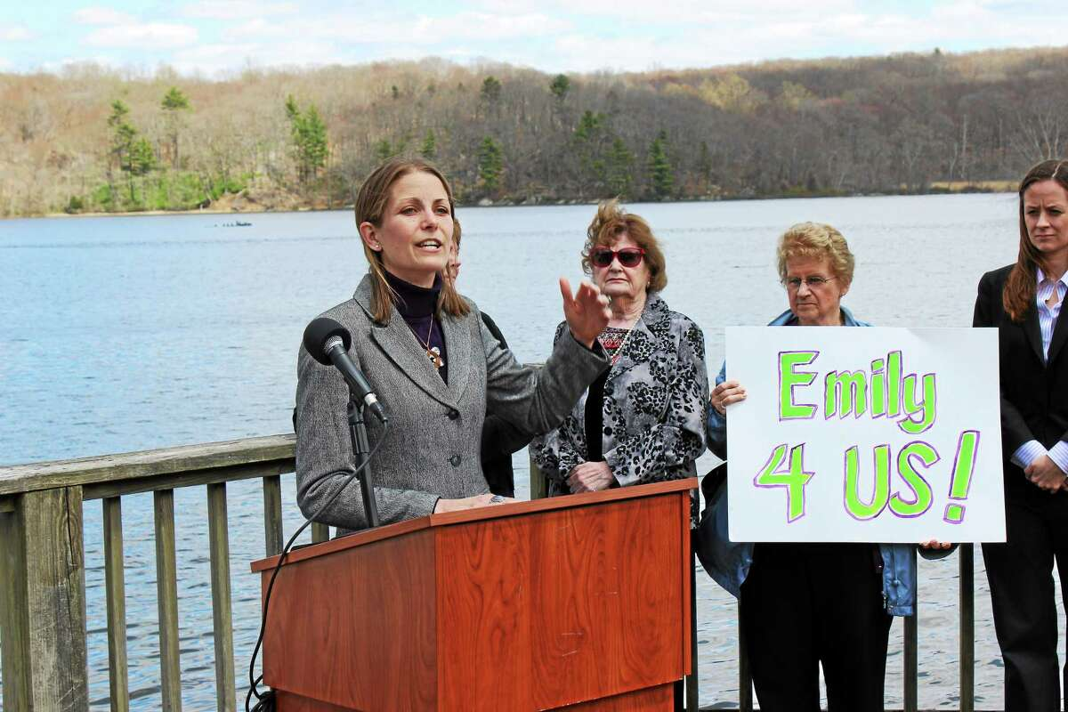Democrat Emily Bjornberg is running for the 33rd State Senate District, which comprises towns in Middlesex County.