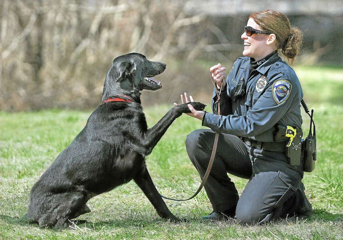Petras works with Ace, a 5-year-old labrador retriever.