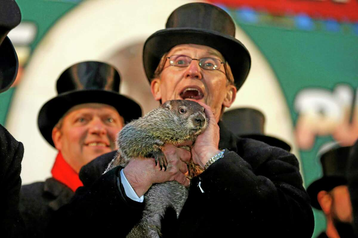 Punxsutawney Phil is held by Ron Ploucha after emerging from his burrow Sunday, Feb. 2, 2014, on Gobblers Knob in Punxsutawney, Pa., to see his shadow and forecast six more weeks of winter weather. The prediction this year fell on the same day as Super Bowl Sunday. AP Photo/Gene J. Puskar