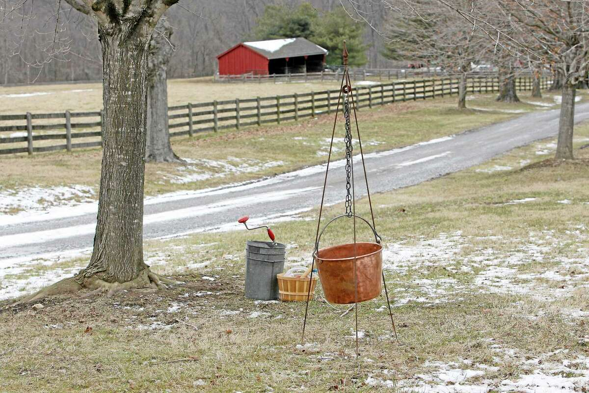 Materials old and new used to make maple syrup sit next to a sugar maple tree. A program on maple syrup will be offered at Cromwell High School on Nov. 23.