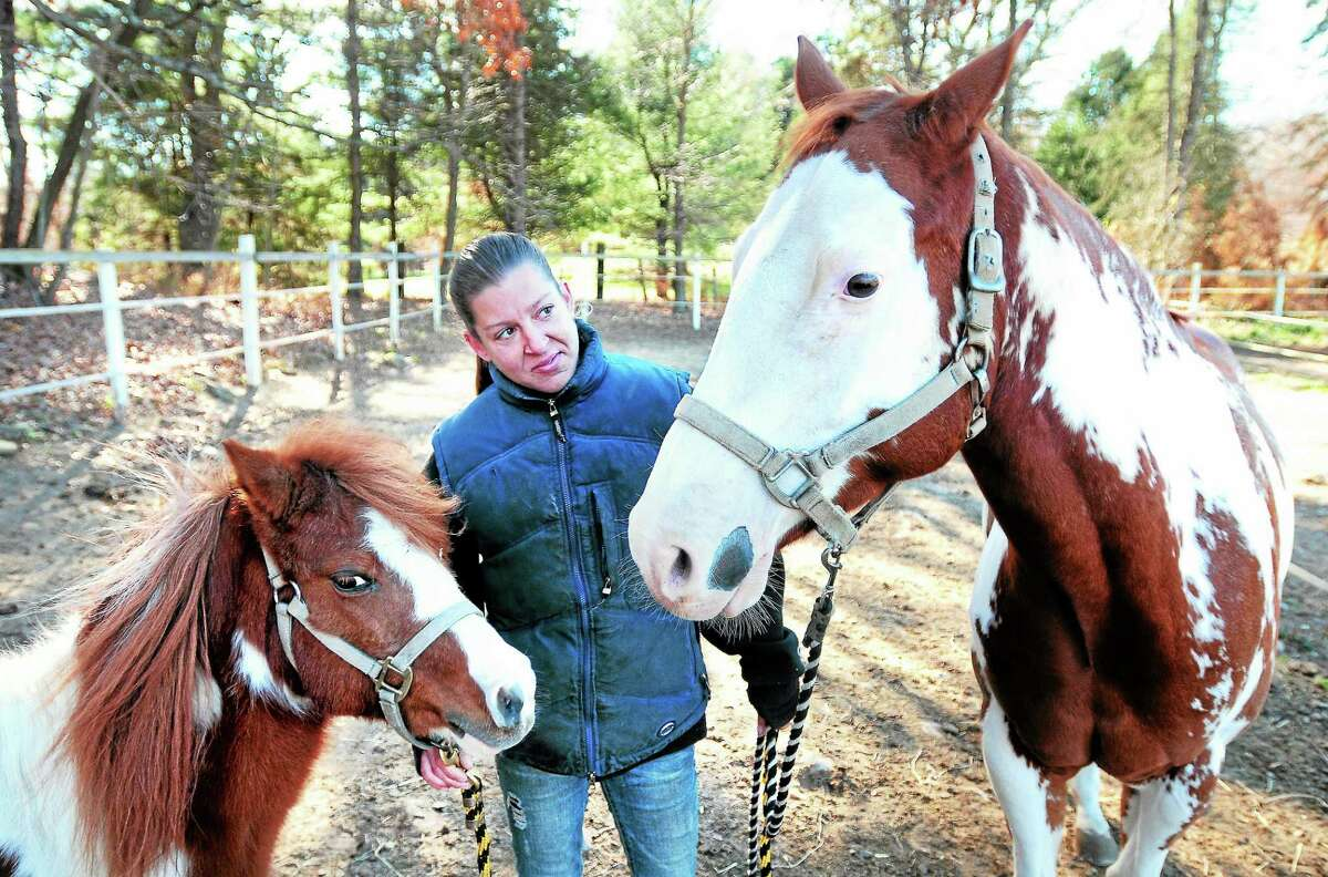 Shannon Pleines is photographed with a 14-year-old miniature pony, Sparkles, left, and Cash, right, a 6-year-old paint at Shannon Equine in Woodbridge in November 2013.
