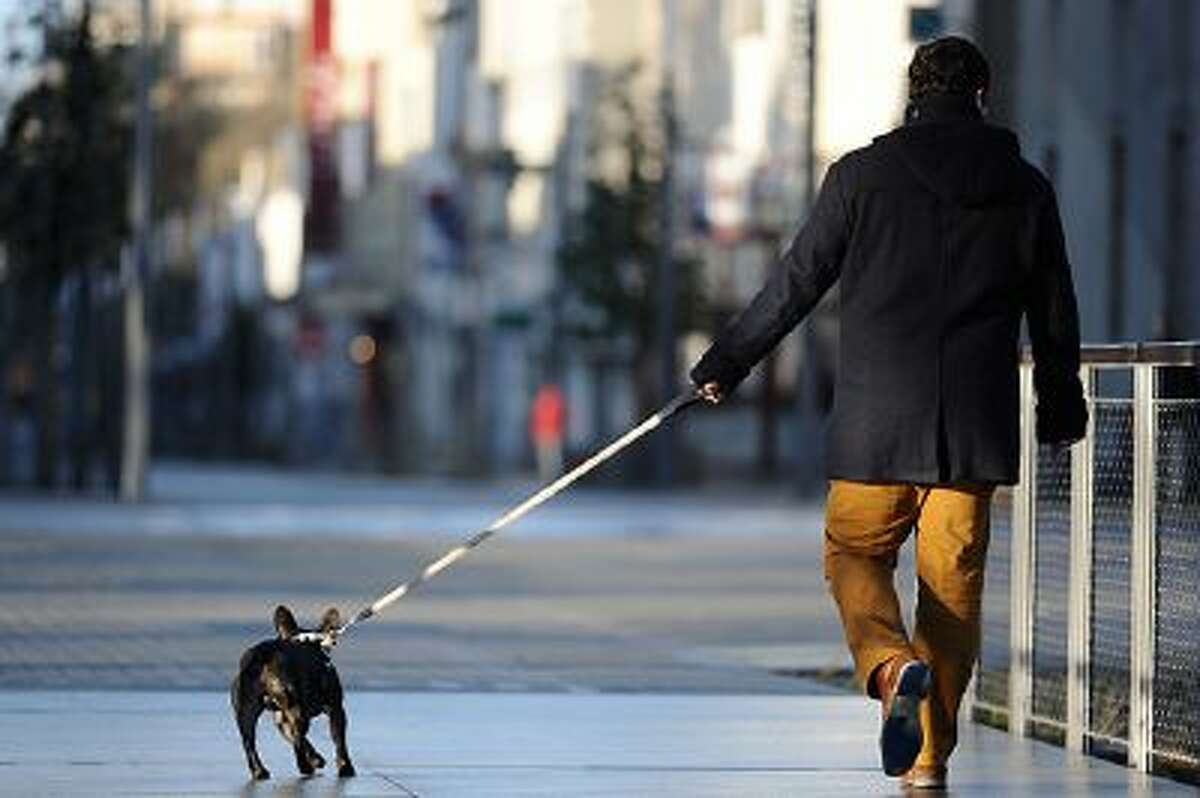 A man walks with his dog on a leash on February 2, 2014 in La Roche-sur-Yon, western France. AFP PHOTO / JEAN-SEBASTIEN EVRARD