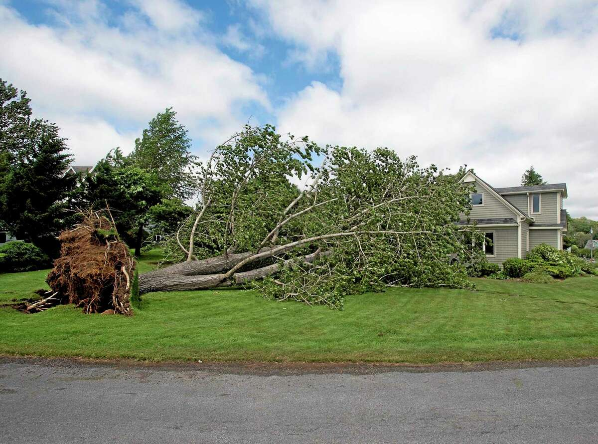 A large uprooted tree rests against a house in Oakland, Nova Scotia on Saturday, July 5, 2014. Thousands of homes and businesses were without power as heavy rains and high winds buffeted the region.(AP Photo/The Canadian Press, Andrew Vaughan)