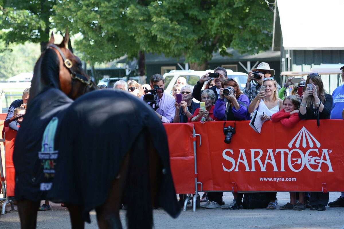 American Pharoah stops for photos as he cools down Friday at Saratoga Race Course in Saratoga Springs, N.Y.