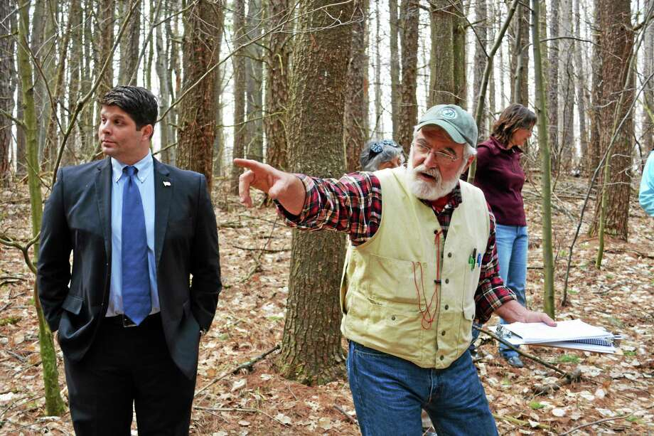 Middletown Mayor Dan Drew, left, answers questions alongside University of Connecticut Forestry Professor Tom Worthley on the city's plans to selectively harvest pine trees in the Wilcox Open Space property as part of a pilot project. Photo: Brian Zahn — The Middletown Press