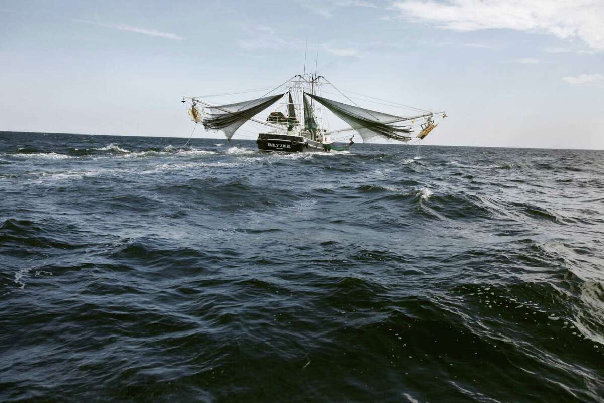 FILE - This April 27, 2010 file photo shows a shrimp boat in the Gulf of Mexico near the Chandeleur Islands, off the Southeastern tip of Louisiana. Five years after the Deepwater Horizon oil rig explosion,