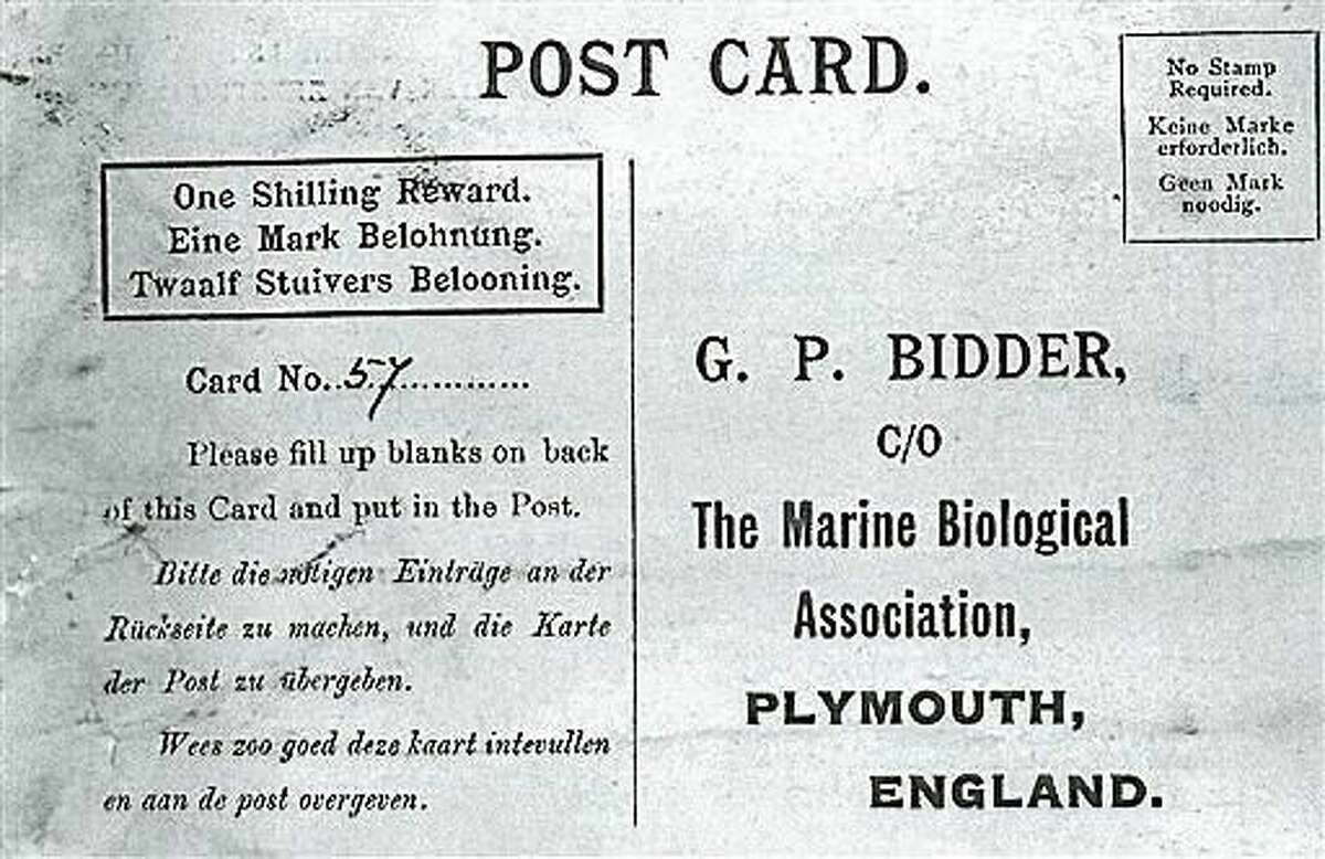 This is an image of a message that was found in a bottle from the The Marine Biological Association of the UK, made available on Friday, Aug. 21, 2015. The century-old message in a bottle, possibly the oldest ever found, has finally reached its destination. Tossed into the North Sea sometime between 1904 and 1906, the bottle washed up on the beach in the German town of Amrum, and was found by a couple in April. Inside, they found a postcard asking that it be sent to the Marine Biological Association of the U.K., which they did.