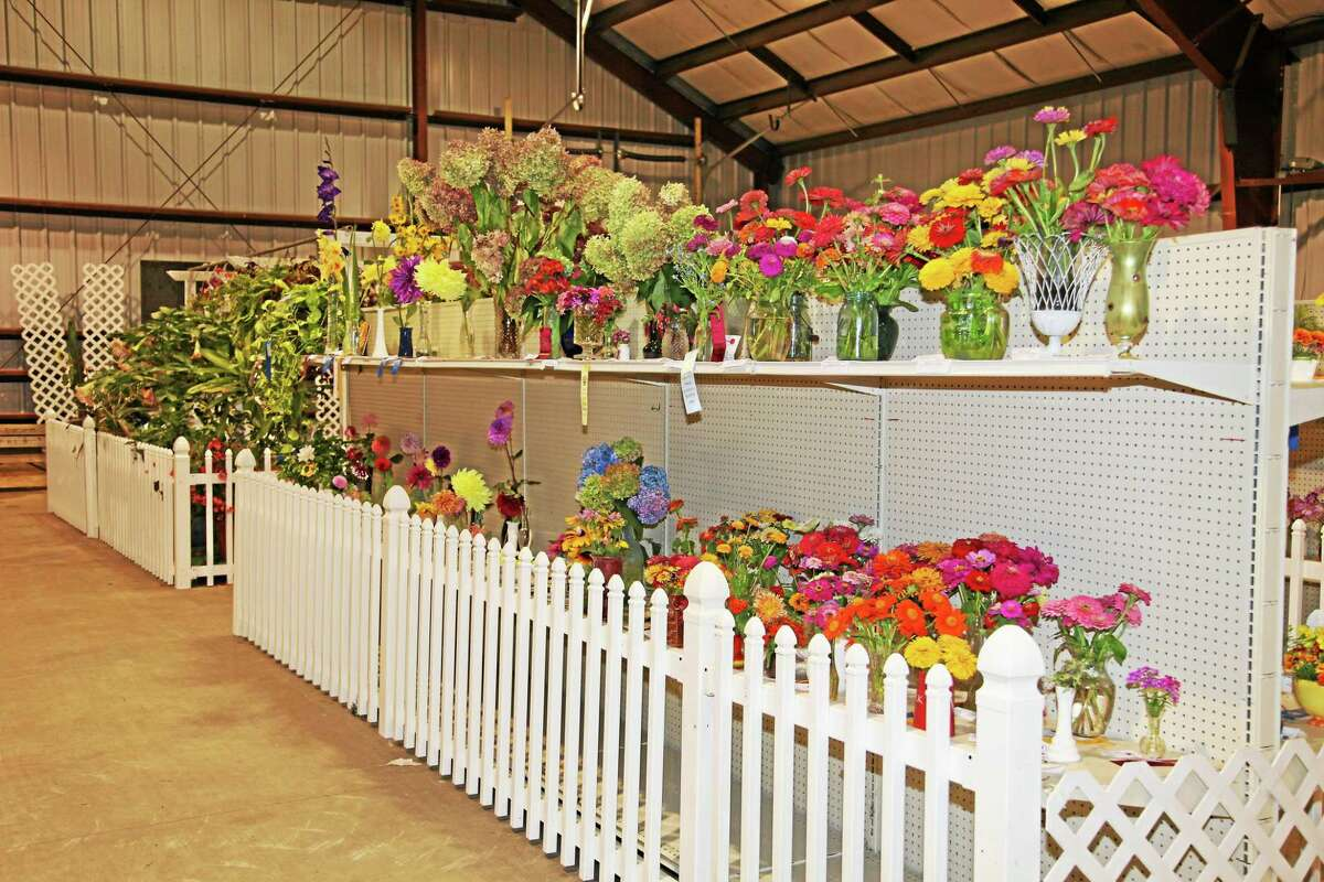 Gardeners from throughout the area enter their flower arrangements at the Durham Fair hoping to collect a myriad of cash prizes and other awards.