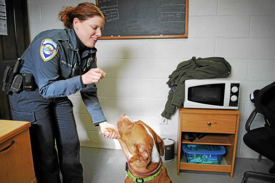 Middletown Animal Control Officer Gail Petras Photo: File