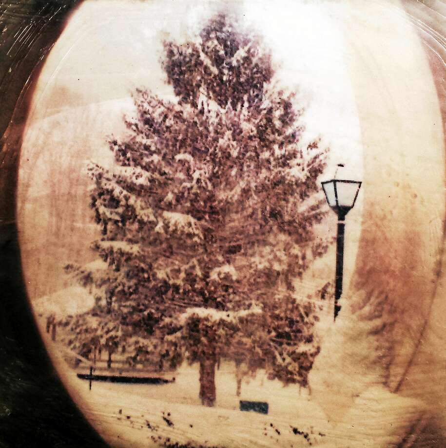 """Images courtesy of the artists """"Six Summit Tree"""" is included in a new exhibit at the Six Summit Gallery in Ivoryton. Photo: Journal Register Co."""