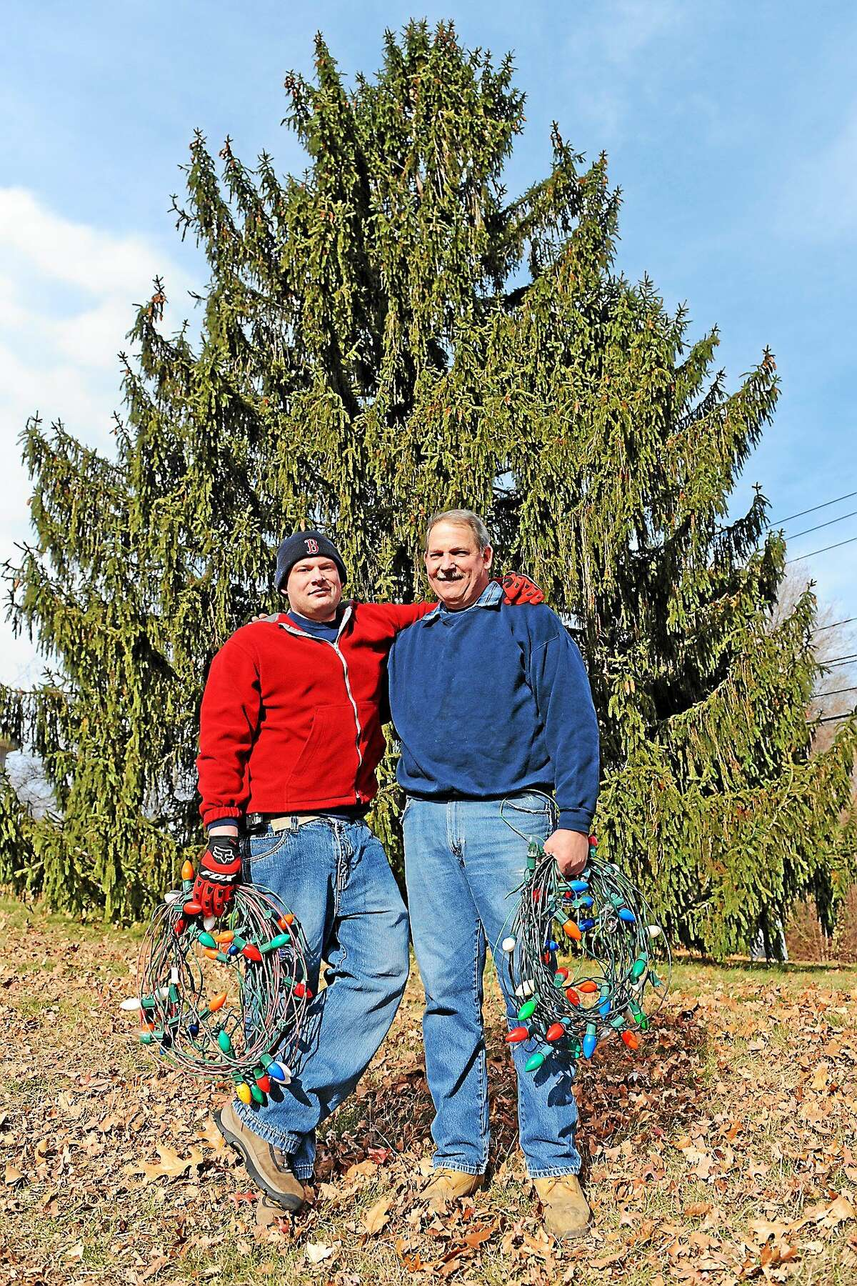 Tom Carlson and his son Scott set up the lights on Nov. 22. The holiday tree on the Higganum Town Green is lit on Thanksgiving Day evening.